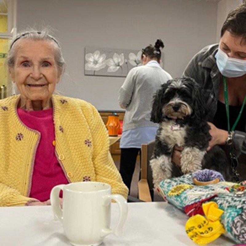 Poppy visits Holy Cross Nursing Home in Sunderland