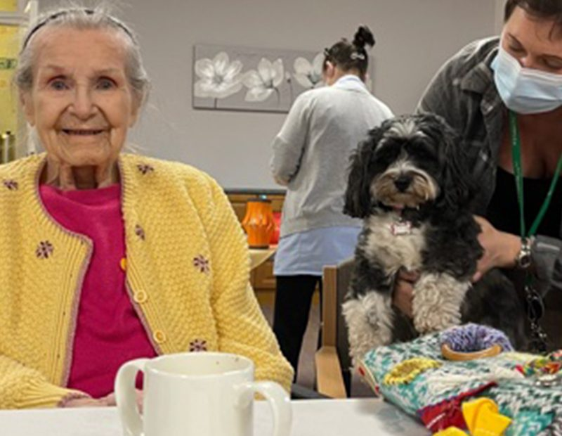 Poppy visits Holy Cross Nursing Home in Sunderland