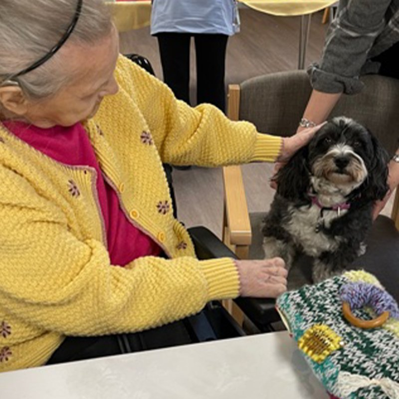 Animal therapy at Holy Cross Nursing Home in Sunderland