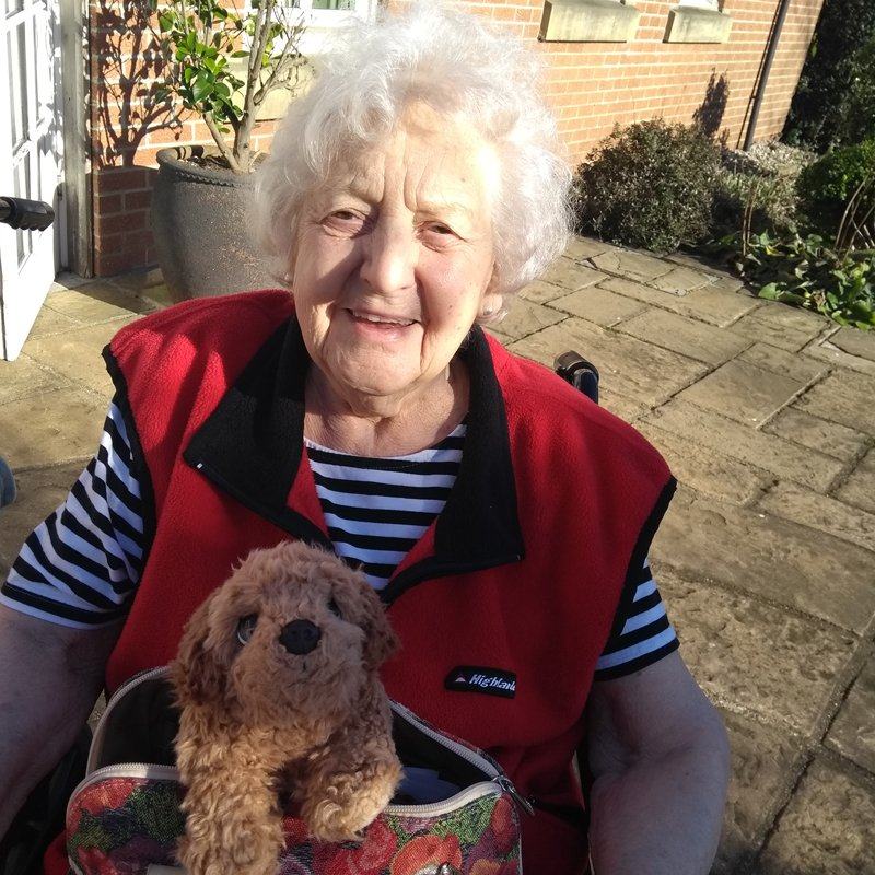 St Catherines nursing home newcastle residents enjoying garden sun
